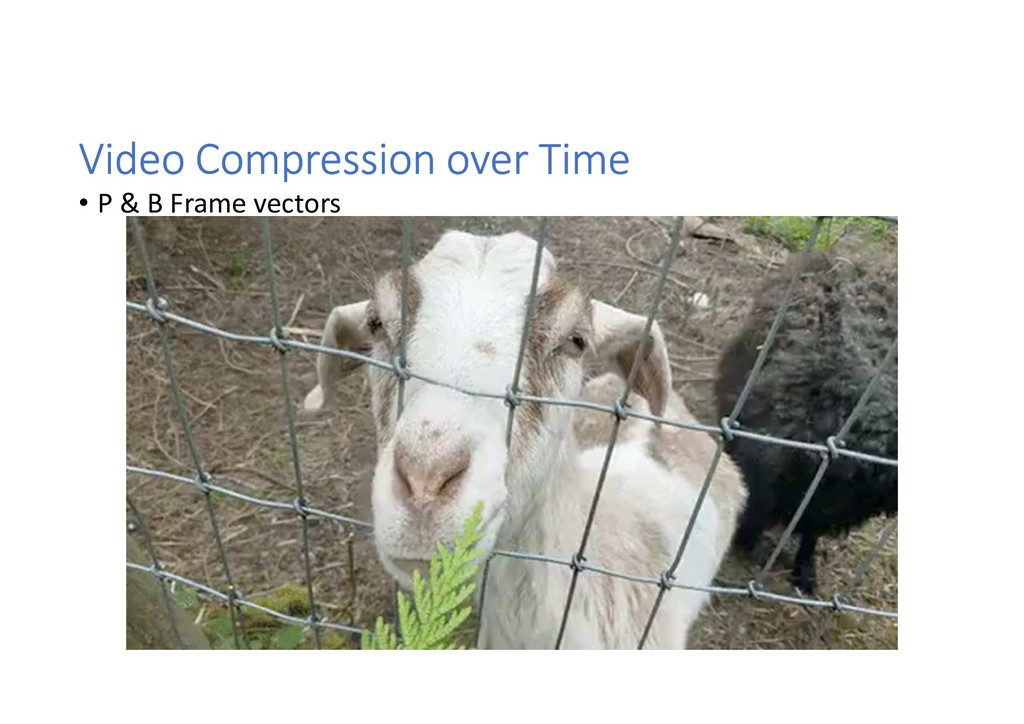 Video Compression over Time • P & B Frame vecto...