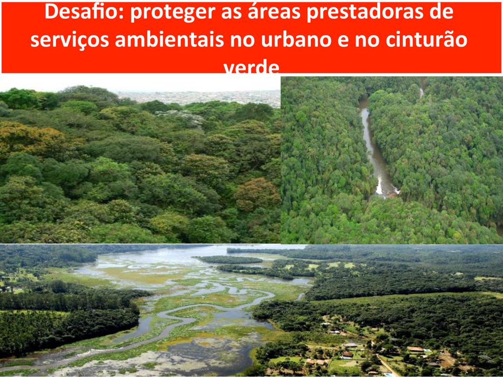 Desafio: proteger as áreas prestador...