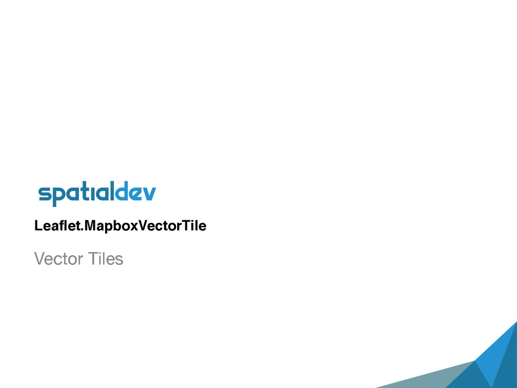 Leaflet.MapboxVectorTile Vector Tiles
