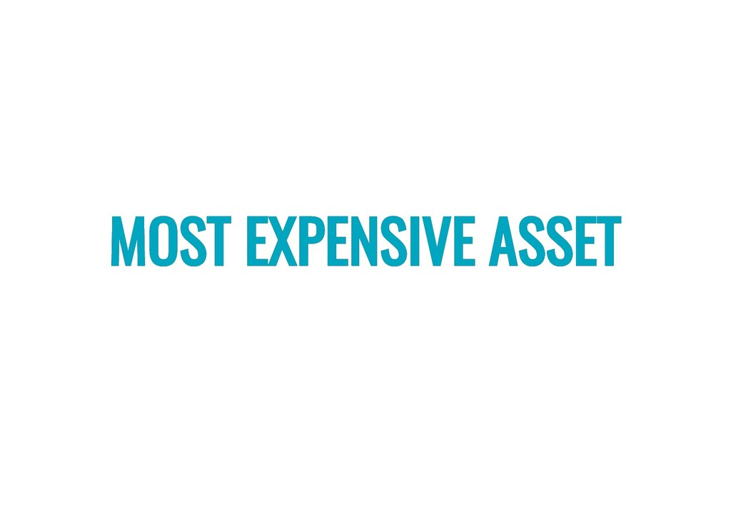 MOST EXPENSIVE ASSET MOST EXPENSIVE ASSET