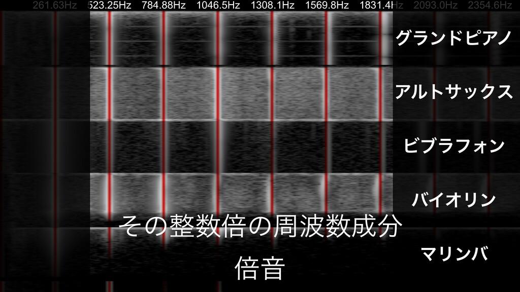 261.63Hz 523.25Hz 784.88Hz 1046.5Hz 1308.1Hz 15...
