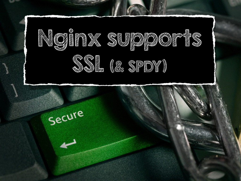Nginx supports SSL (& SPDY)