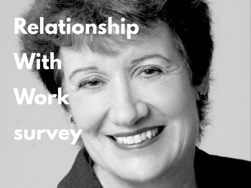 Relationship With Work survey