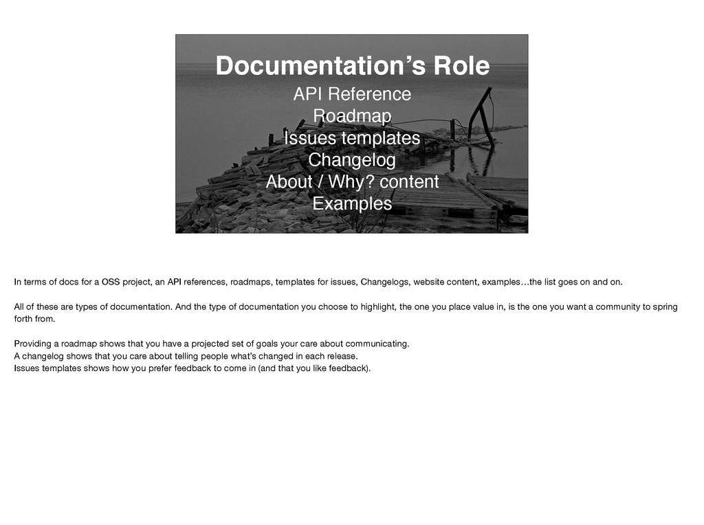 Documentation's Role API Reference Roadmap Issu...