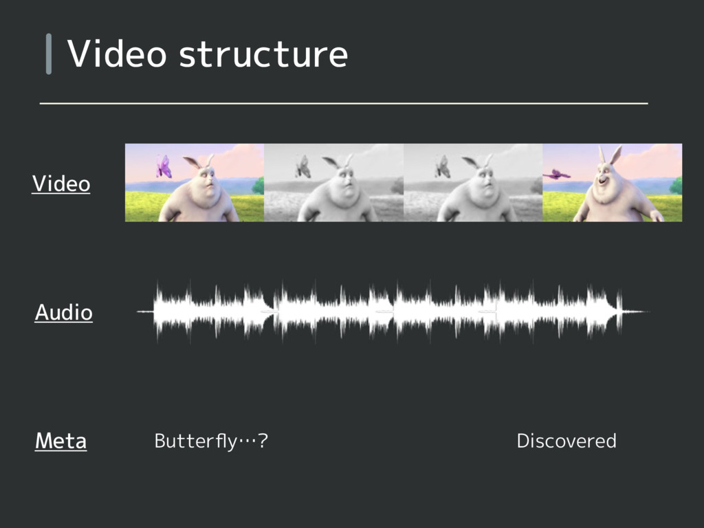 Video structure Video Audio Meta Butterfly…? Dis...