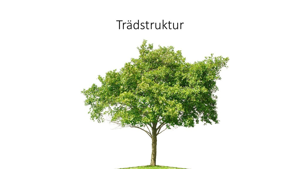 Trädstruktur