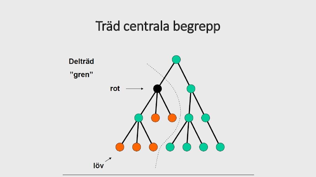 Träd centrala begrepp