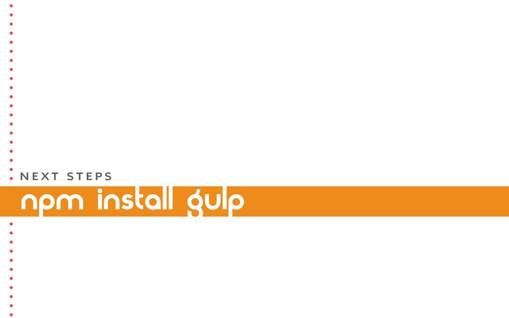 npm install gulp N E X T S T E P S