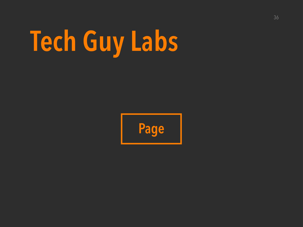 36 Page Tech Guy Labs