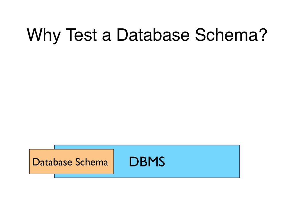 Why Test a Database Schema? DBMS Database Schema
