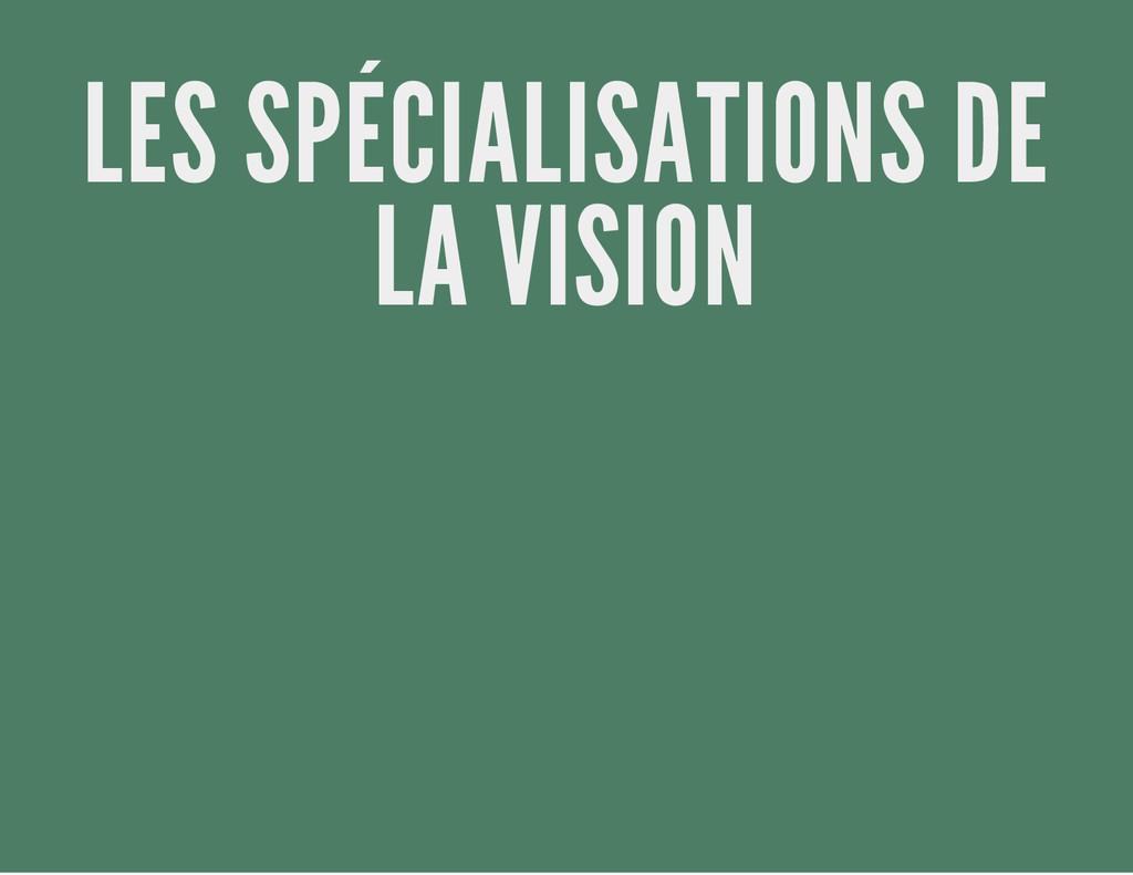 LES SPÉCIALISATIONS DE LA VISION