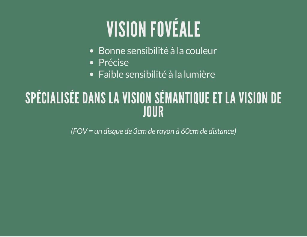 VISION FOVÉALE Bonne sensibilité à la couleur P...