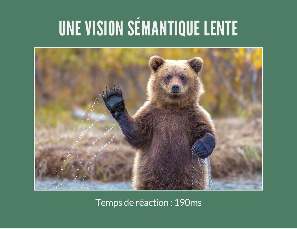 UNE VISION SÉMANTIQUE LENTE Temps de réaction :...