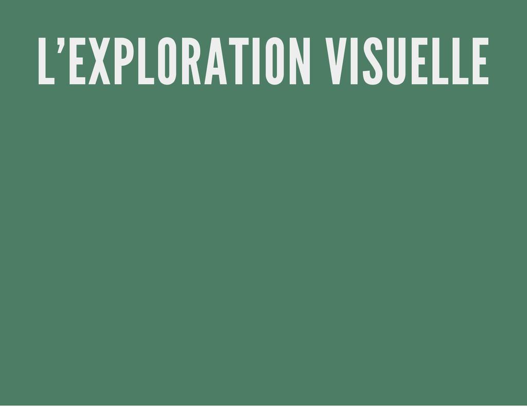 L'EXPLORATION VISUELLE