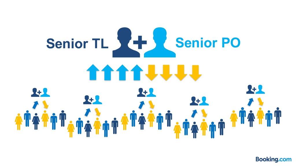 Senior TL Senior PO