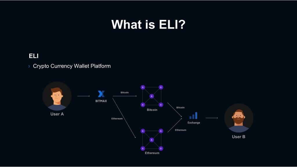 ELI › Crypto Currency Wallet Platform User A Us...