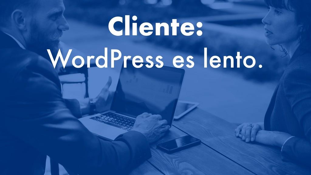 Cliente: WordPress es lento.