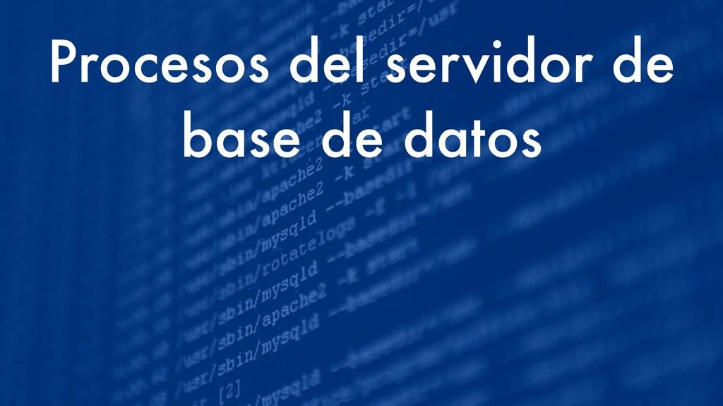Procesos del servidor de base de datos