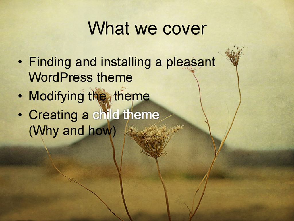 What we cover • Finding and installing a pleas...