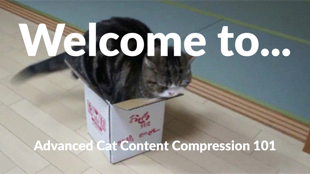 Welcome'to... Advanced(Cat(Content(Compression(...