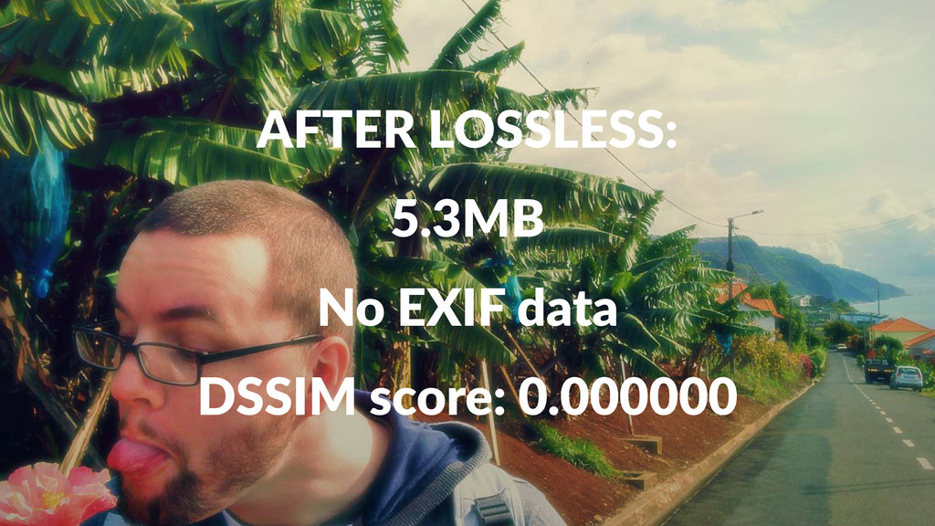 AFTER&LOSSLESS: 5.3MB No#EXIF#data DSSIM%score:...