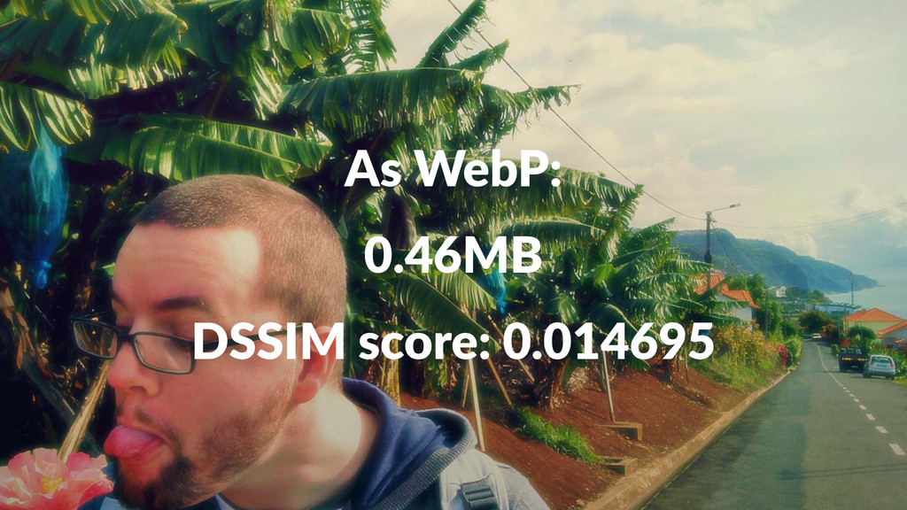 As#WebP: 0.46MB DSSIM%score:%0.014695