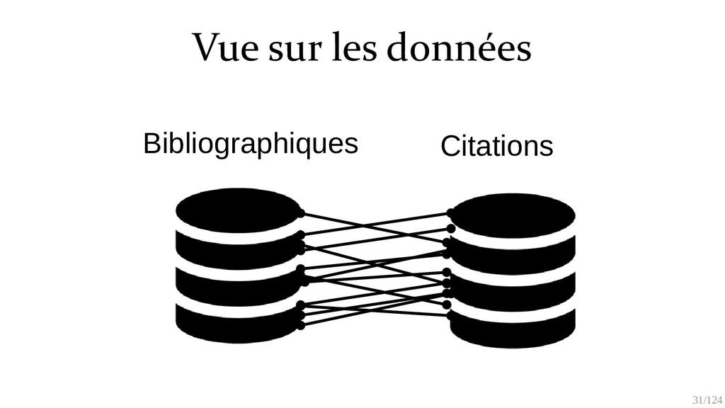 31/125 Vue sur les données Bibliographiques Cit...