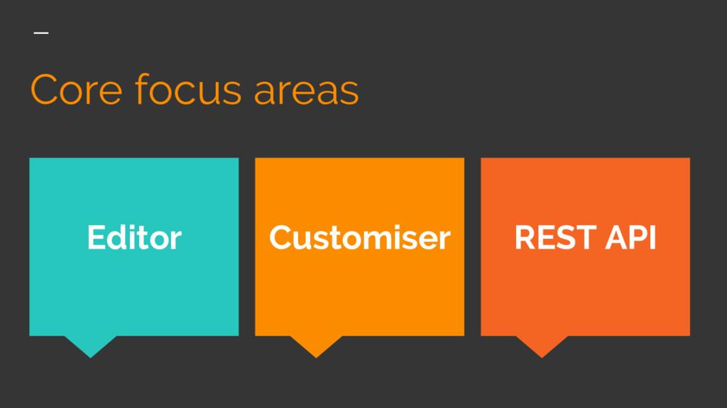 Core focus areas REST API Editor Customiser