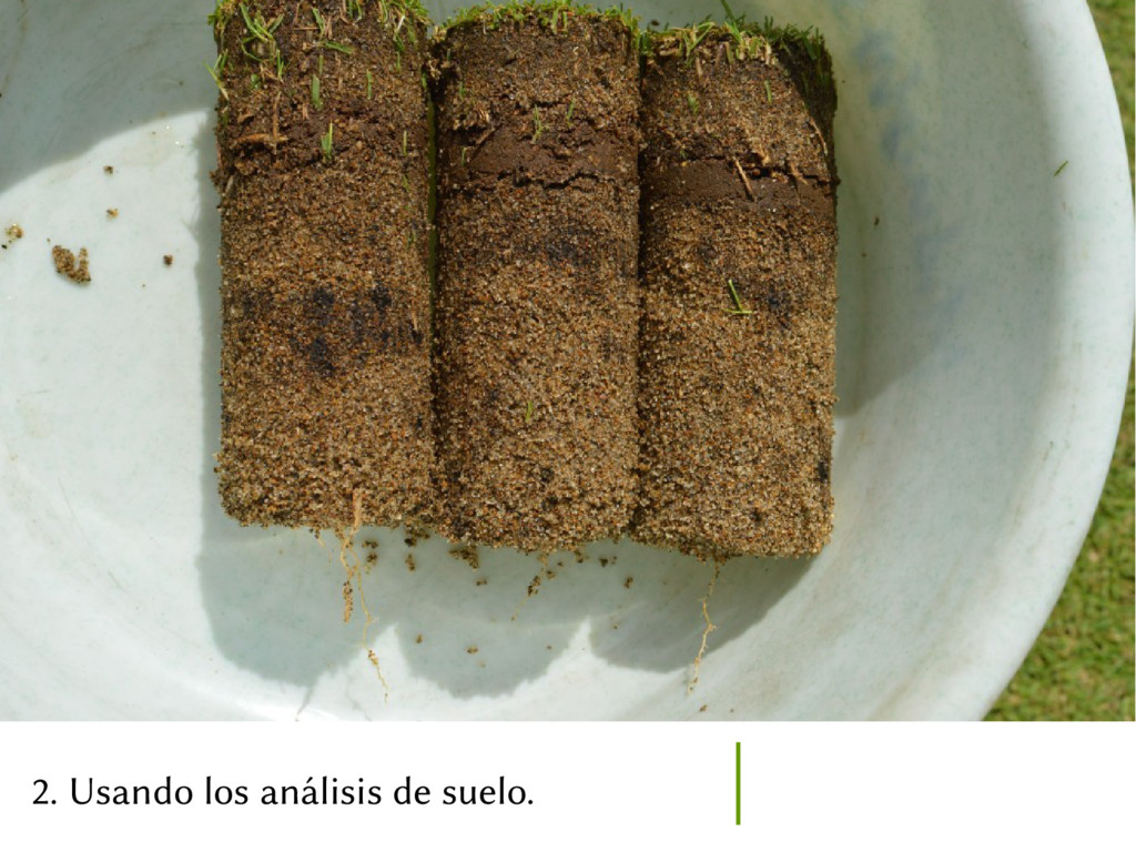 2. Usando los análisis de suelo.