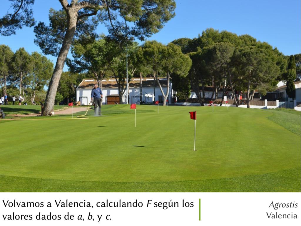 Agrostis Valencia Volvamos a Valencia, calculan...