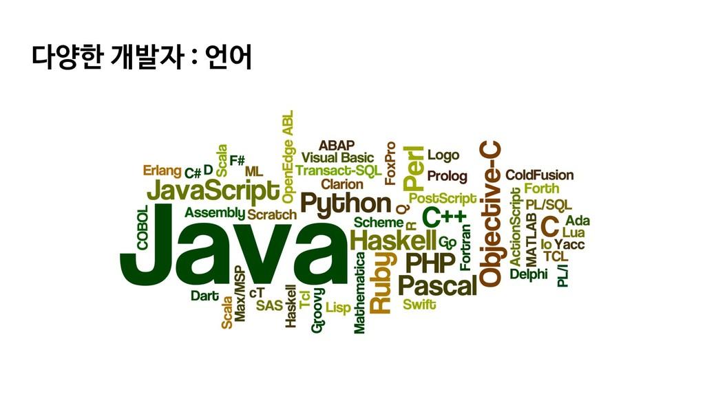 다양한 개발자 : 언어