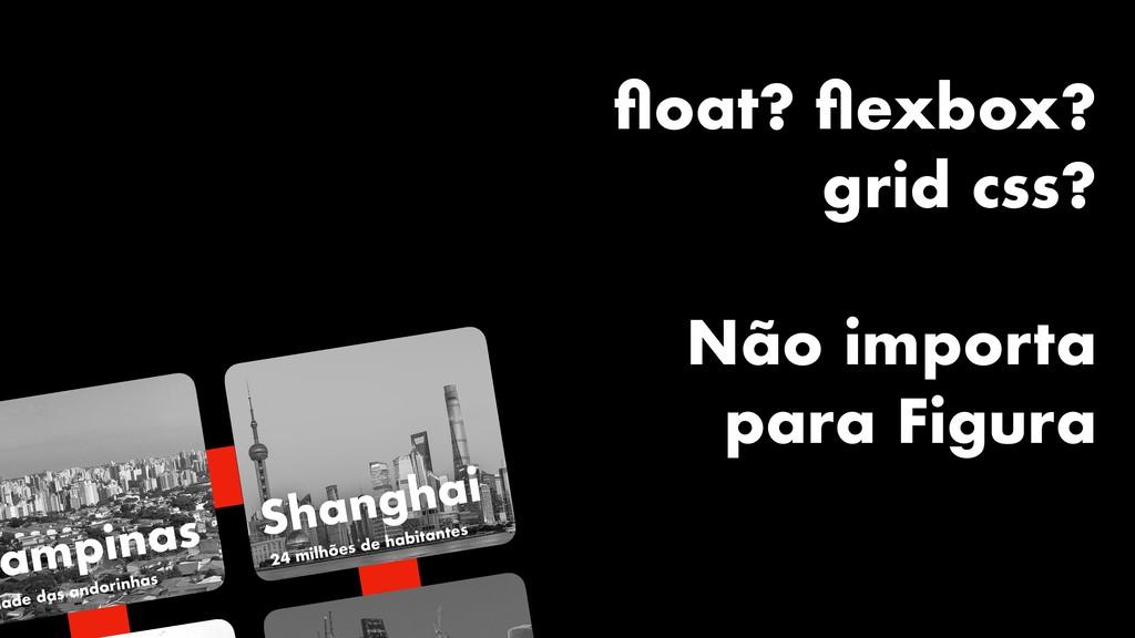 Campinas dade das andorinhas Shanghai 24 milhõe...