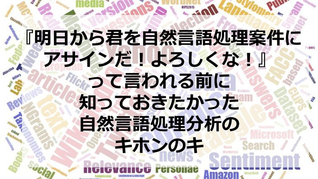 『明日から君を自然言語処理案件に アサインだ!よろしくな!』 って言われる前に 知っておきたか...