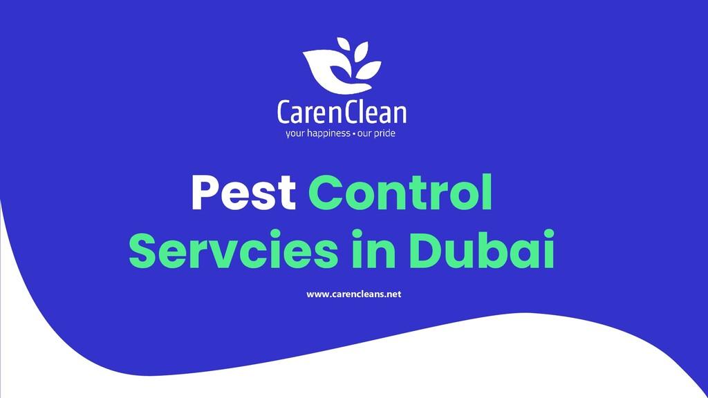 Pest Control Servcies in Dubai www.carencleans....