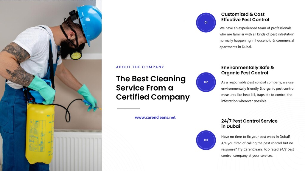 Customized & Cost Effective Pest Control We hav...