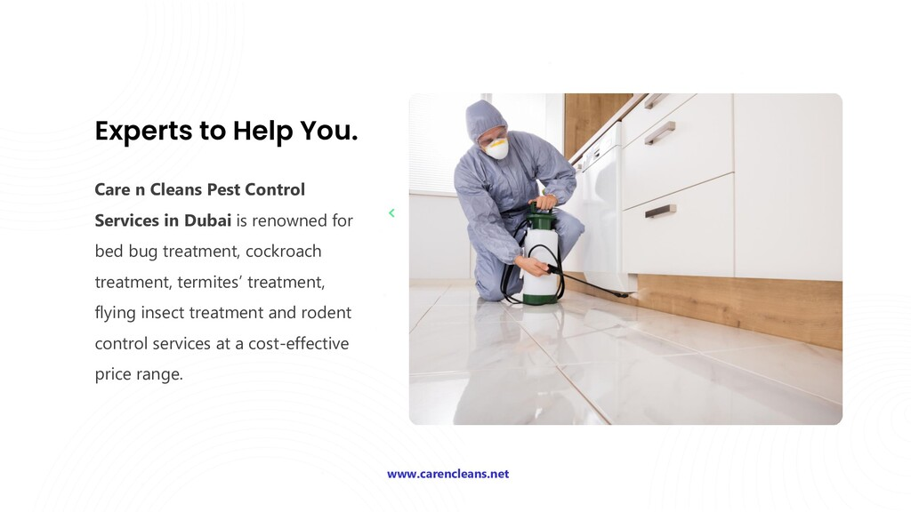 Experts to Help You. Care n Cleans Pest Control...