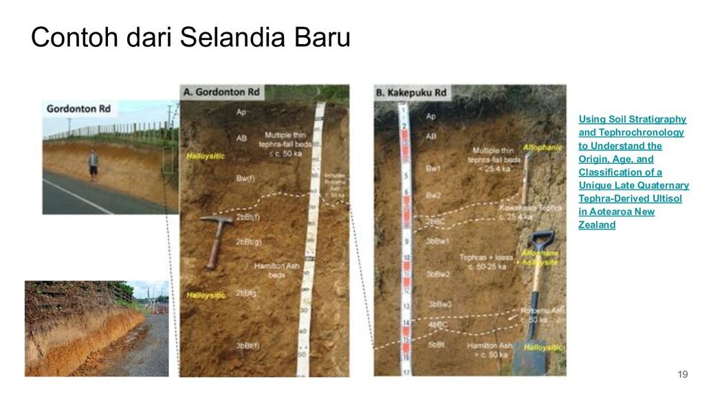 Contoh dari Selandia Baru 19 Using Soil Stratig...