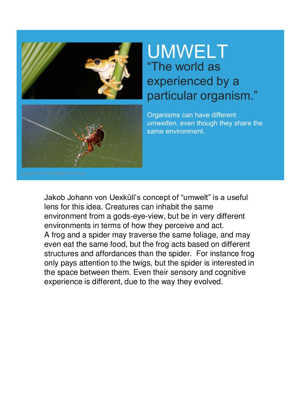 "Jakob Johann von Uexküll's concept of ""umwelt"" ..."