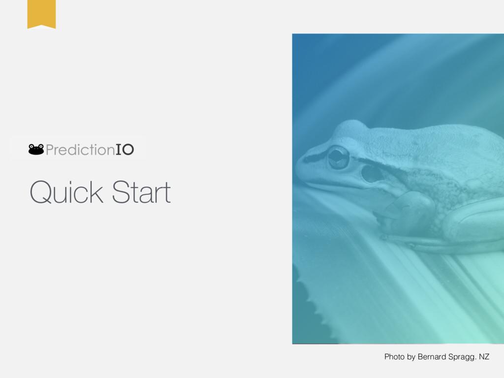 Photo by Bernard Spragg. NZ Quick Start