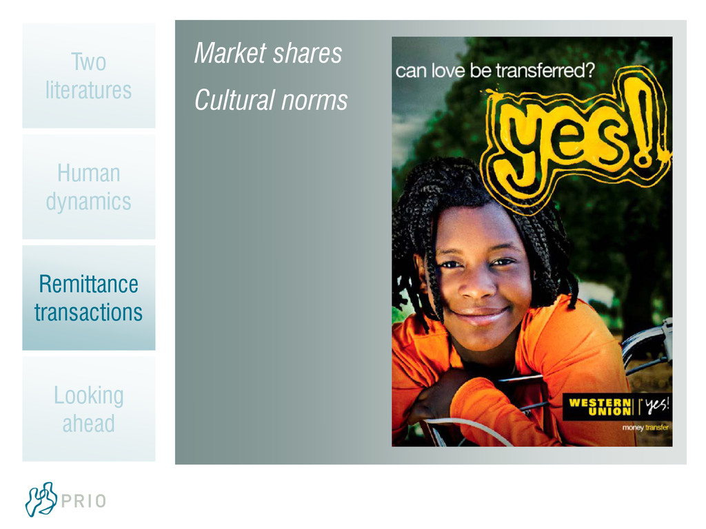 Market shares Cultural norms Two literatures Hu...