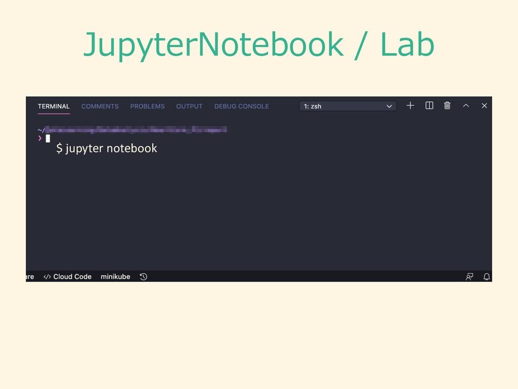 JupyterNotebook / Lab $ jupyter notebook