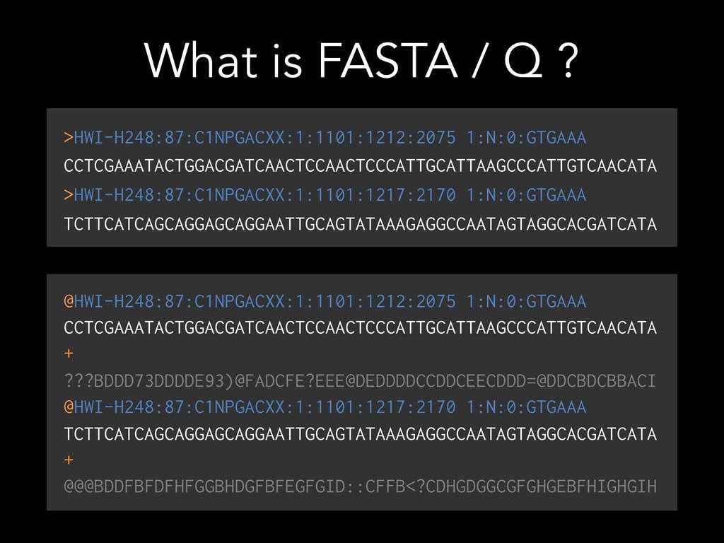 What is FASTA / Q ? >HWI-H248:87:C1NPGACXX:1:11...