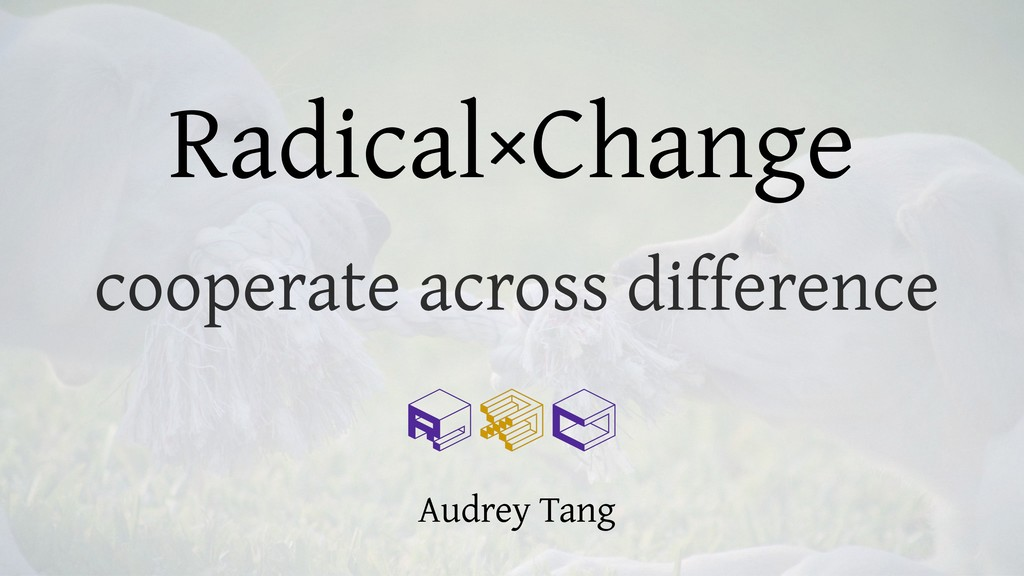Radical×Change cooperate across difference Audr...