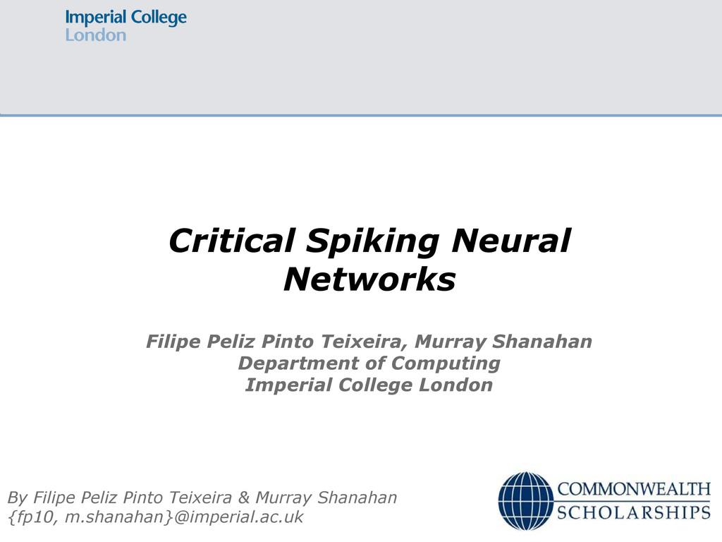 Critical Spiking Neural Networks By Filipe Peli...