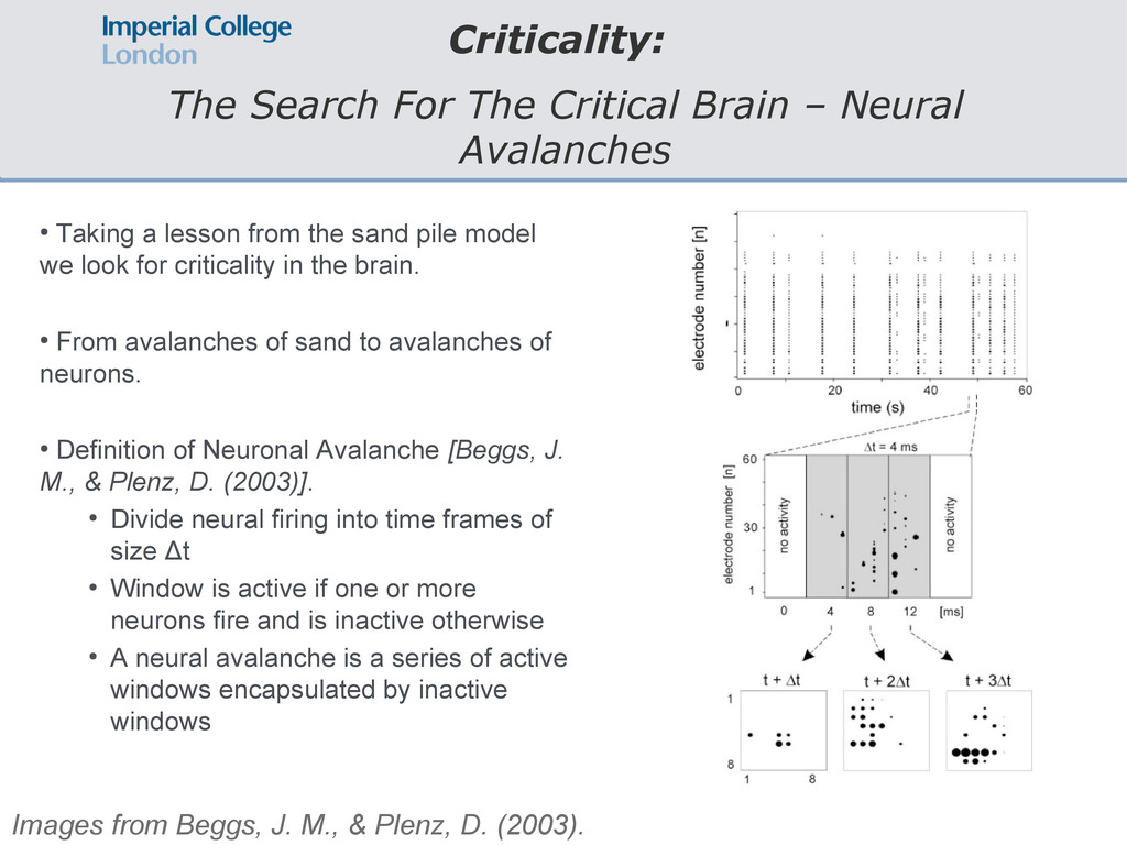 Criticality: The Search For The Critical Brain ...