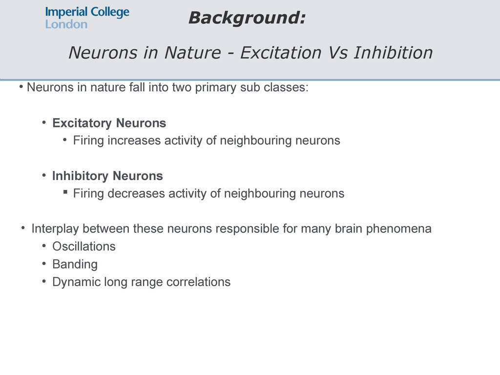 Background: Neurons in Nature - Excitation Vs I...