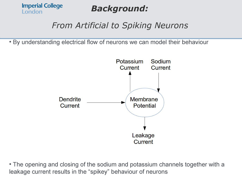 Background: From Artificial to Spiking Neurons ...