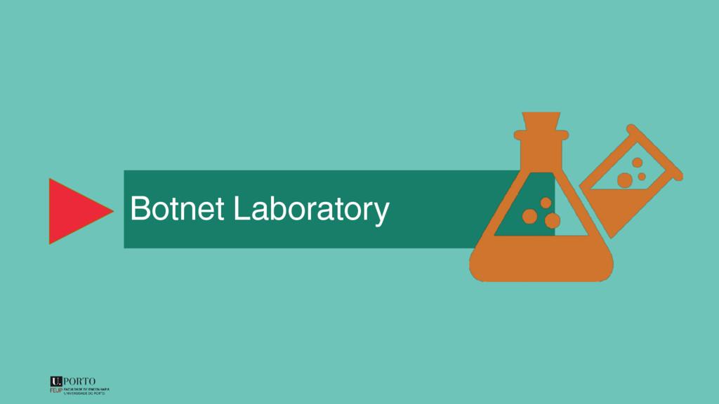 Botnet Laboratory