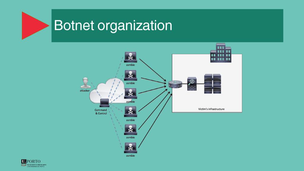 Botnet organization
