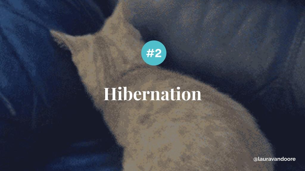 Hibernation #2 @lauravandoore